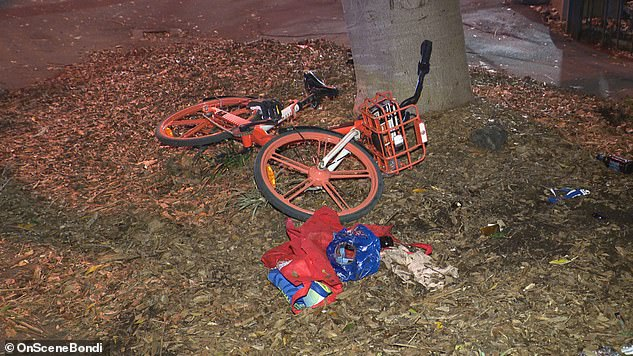 So far nine teenagers have been arrested over the attack in which Brett Halcro was allegedly knocked off his bike (pictured) before being sadistically injured while unconscious